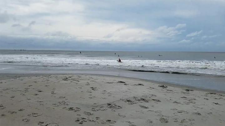 Surfers_1536877265603.jpg