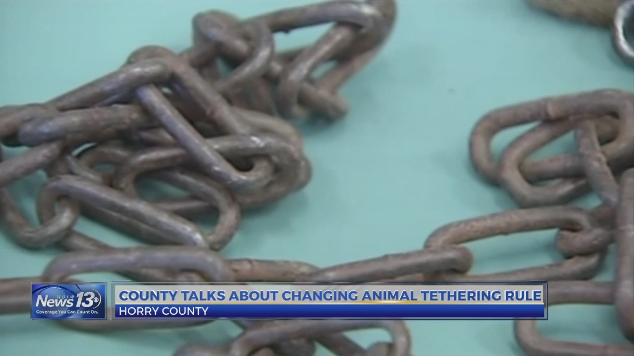 Horry_County_animal_tethering_ordinance_0_20190212223834