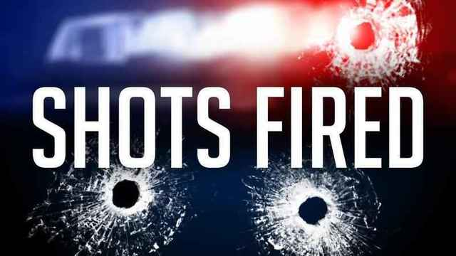 IPD investigating after 'multiple reports' of shots fired along South Geneva Street