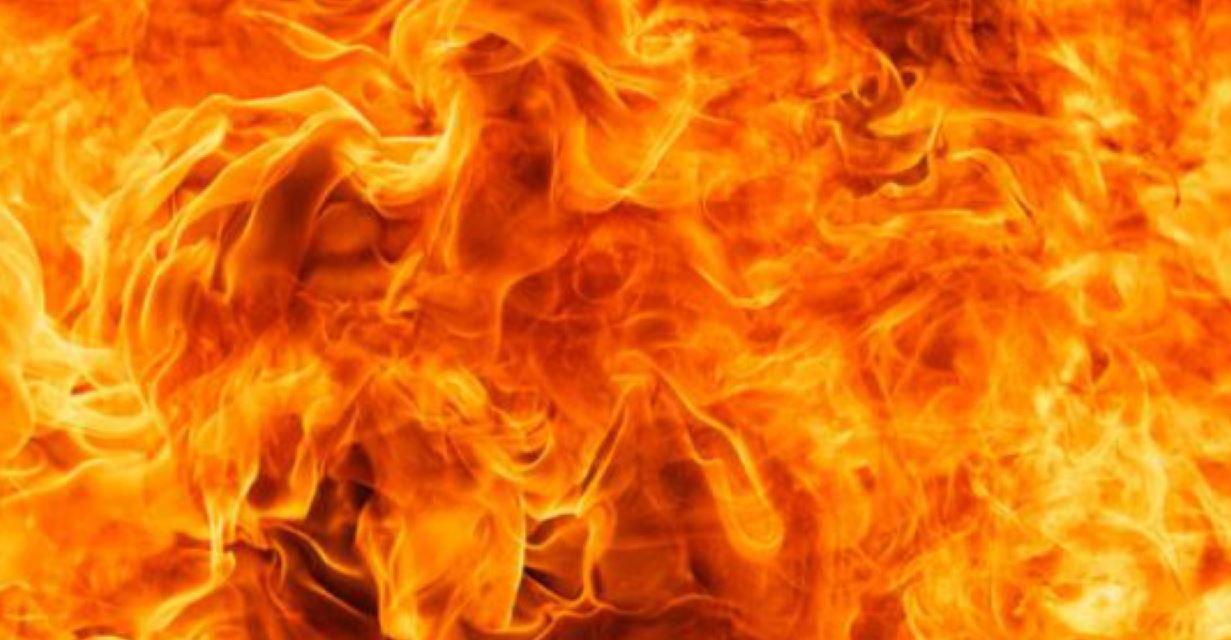 vert fire_1559041878345.JPG.jpg