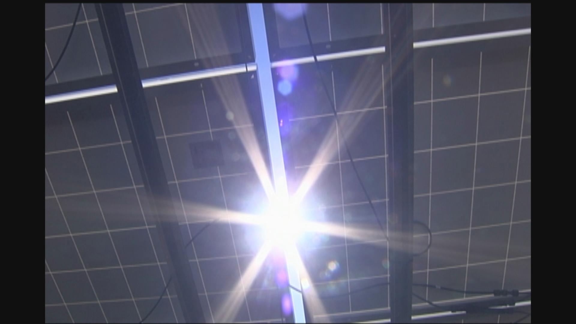 solar farm (1)_1551392568250.jpg.jpg