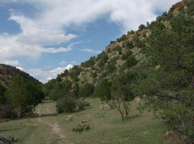 Trails at the W Diamond L Ranch