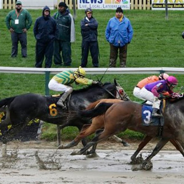 Preakness Stakes Horse Racing_161482
