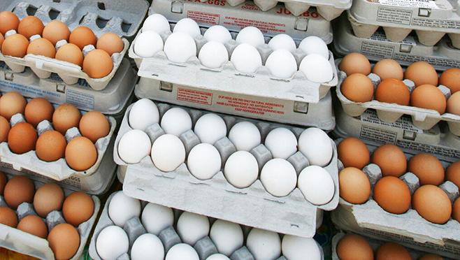 eggs_1552675223571.jpg