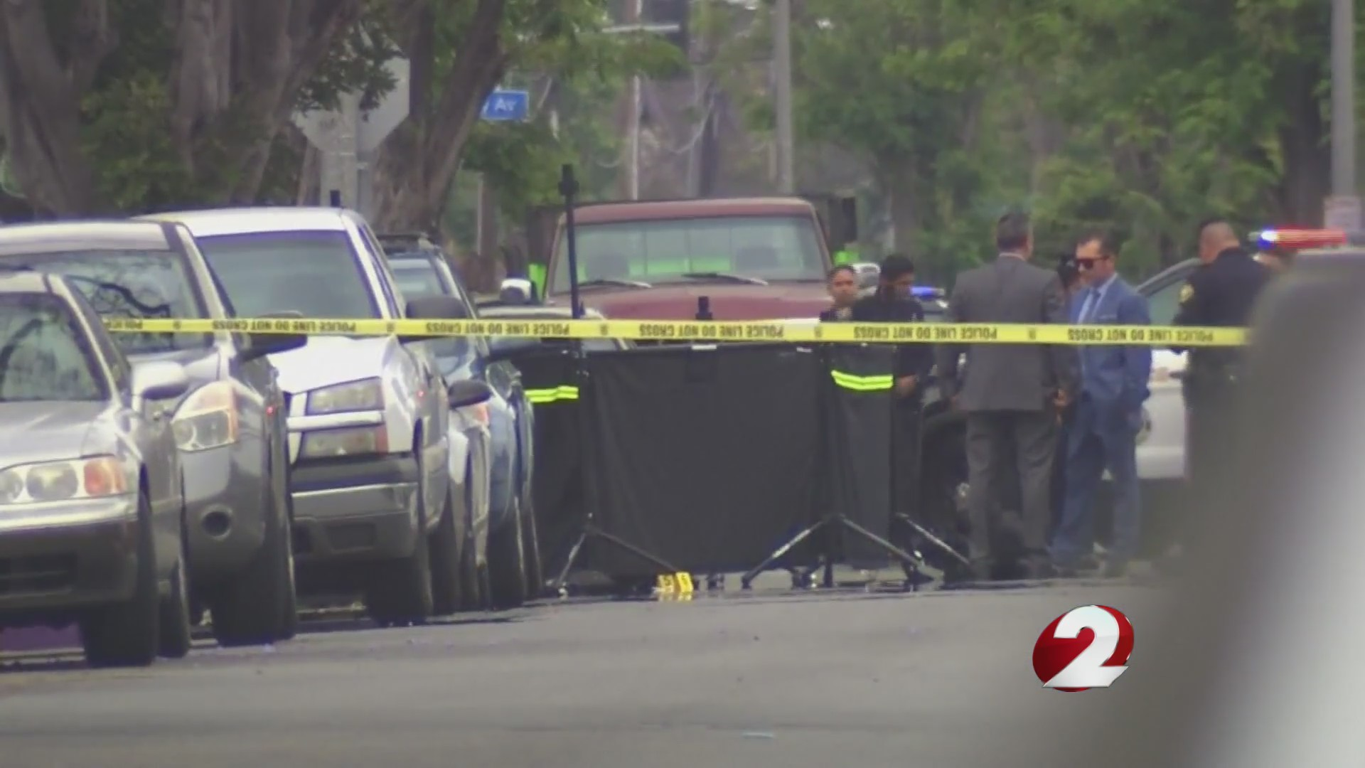 Woman beaten to death with electric scooter