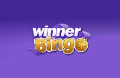 Winner Bingo Logo