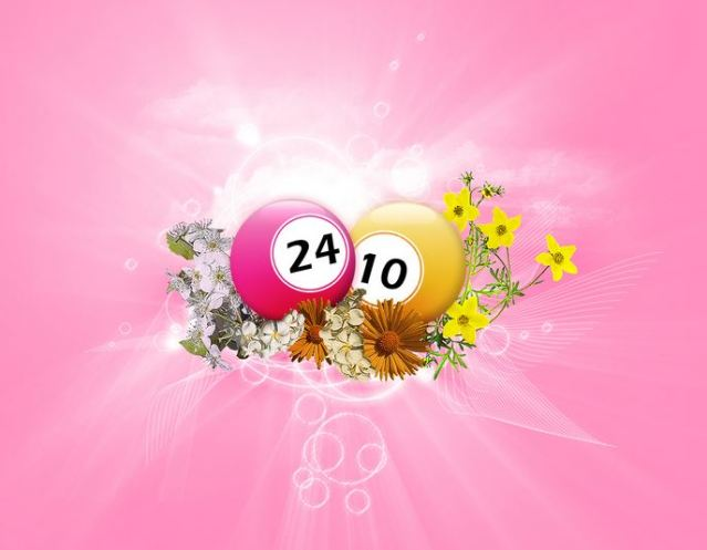 Bingo, sunshine and flowers