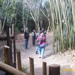 Wild-Africa-Trek-wdwradio-685