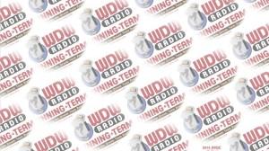 PPDC WDW Radio Running Team Digi Scrapbook Paper