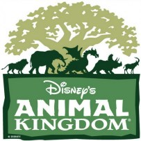 animal kingdom - disney