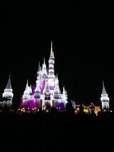 Cinderella Castle Dream Lights - Blake