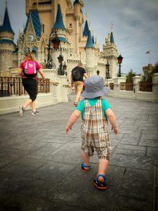 Walt-Castle