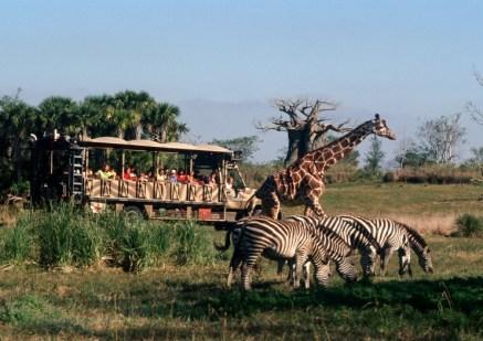 Kilimanjaro Safaris - disney