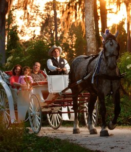 "alt=""Horse-drawn carriage at Disney's Fort Wilderness Campground."""