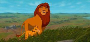 roi lion cycle de la vie