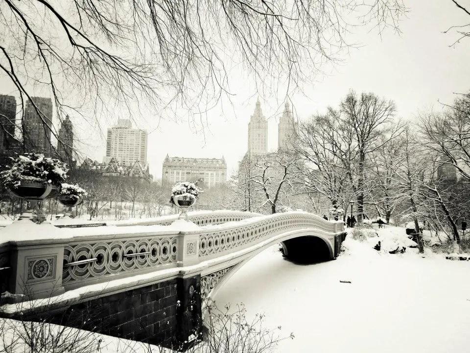 photos de new york sous la neige