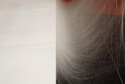 albin1.jpg
