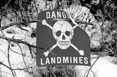 Landmines[1].jpg