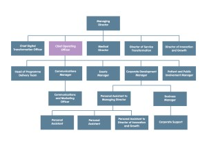 The structure of the Corporate Team, showing where the Chief Operating Officer sits