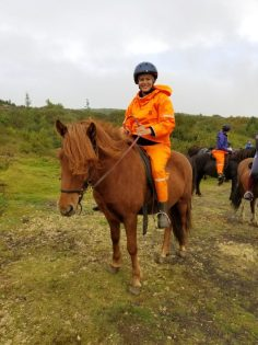 how to travel to Europe for cheap, ride horses on iceland