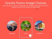 Gravity Forms Image Choices 1.3.39