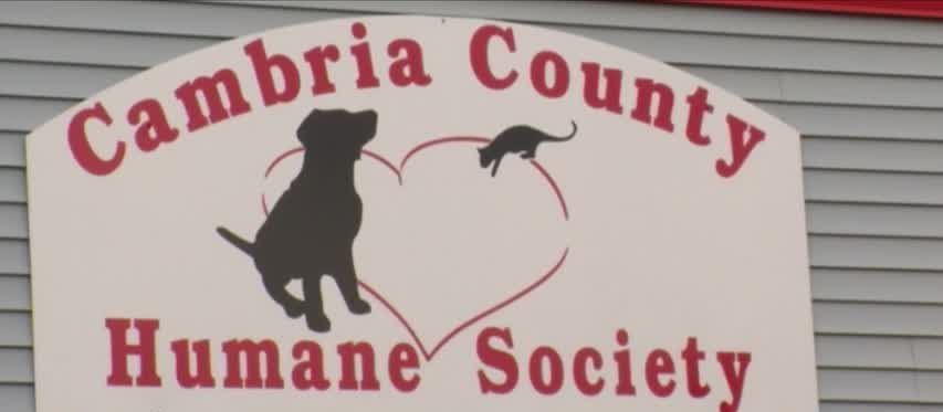 Cambria County Humane Society names new executive director_98016471