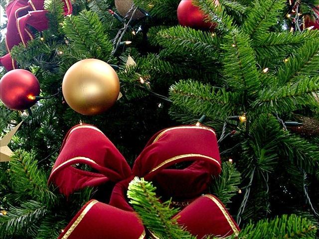 christmas_1543347909559.jpg