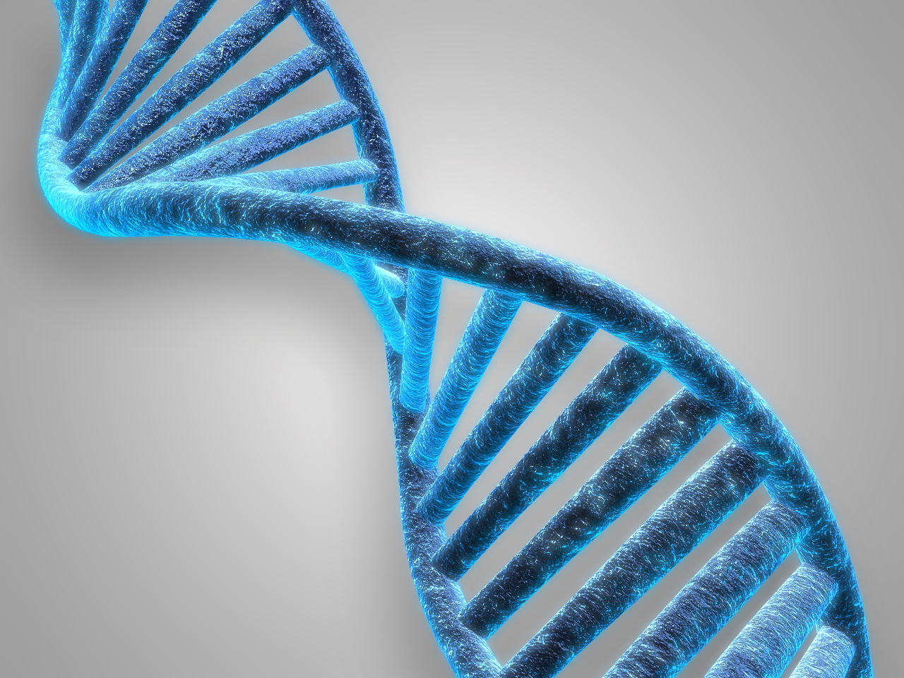 DNA_1549906323997.jpg