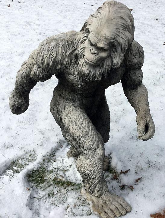 bigfoot-1620140_960_720_1557492831421.jpg