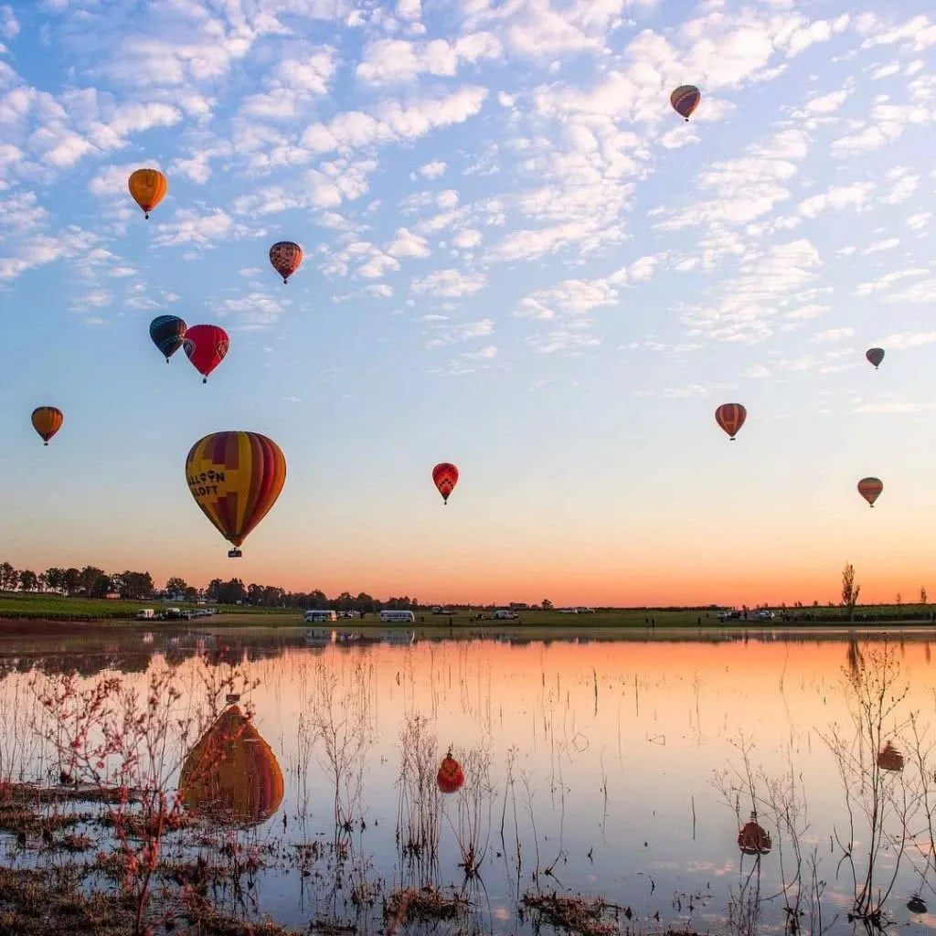 "Microadventures with @mandownphotography 1/5 ""Scarborough Vineyards, Pokolbin, NSW. Hot air balloons with a warm sunrise at the Hunter Valley balloon Fiesta."" #weareexplorers"