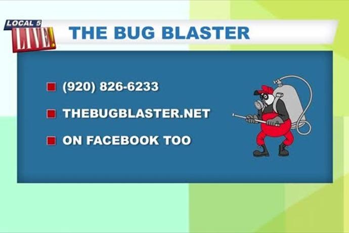 Bug Blaster_-4395470515737967253