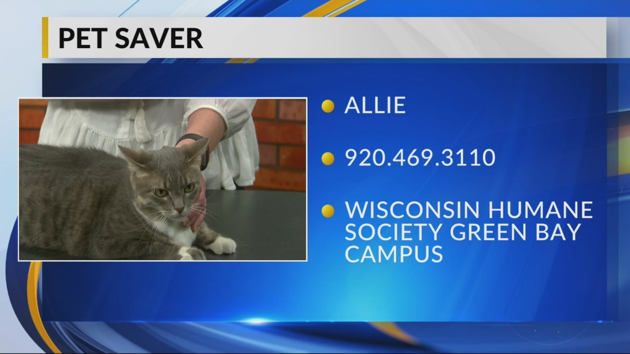 Petsaver: Allie