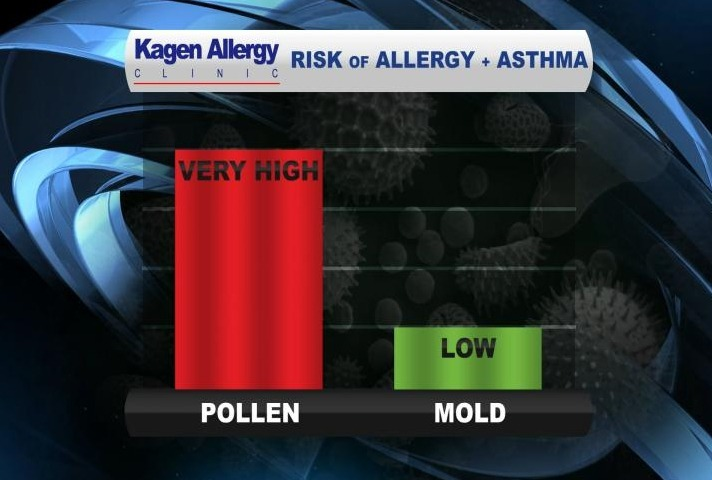 Allergy Report Very High Low