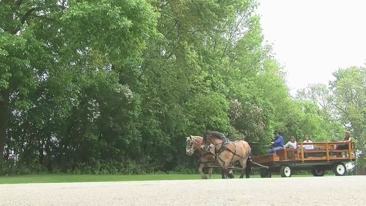 Historic Wagon Ride