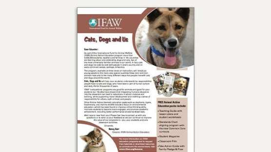 Cats, Dogs and Us - Teaching Guide