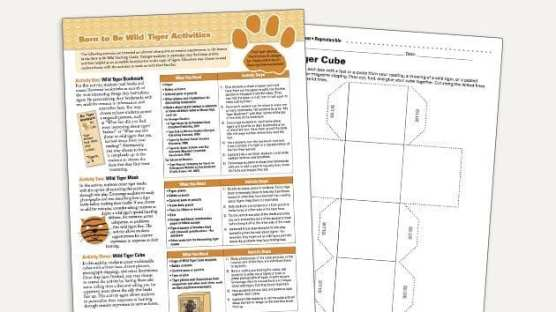Grades K-2: Born to Be Wild - Lesson Plan