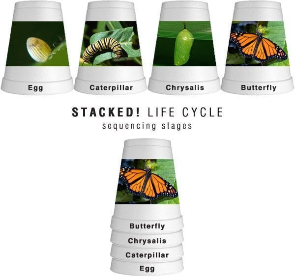 stacked_lifecycle
