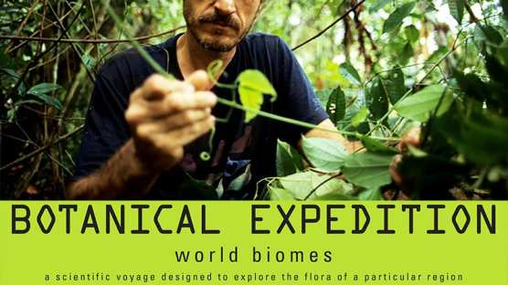 Plants Design Biomes Lesson