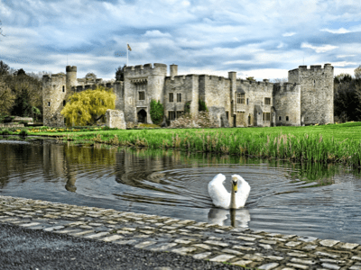 Allington castle - Charity Fundraiser (F)