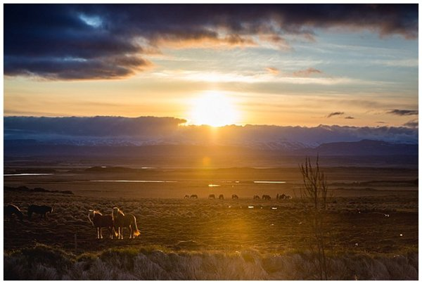 Sunsets behind the mountains with Icelandic horses grazeing at the foot