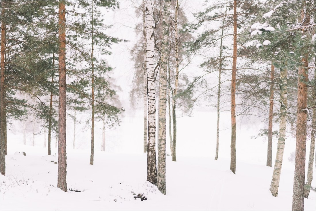 A frozen forest in Finland by Lucie Watson Photography