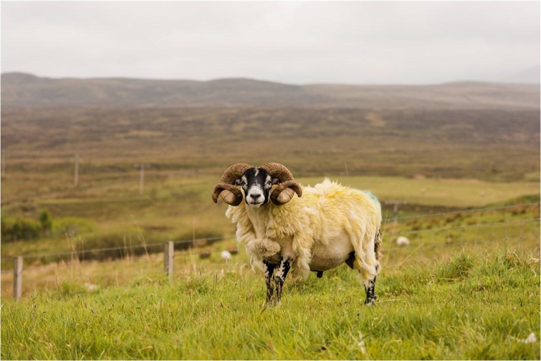 Isle of Skye, A Clifftop Elopement on the Isle of Skye