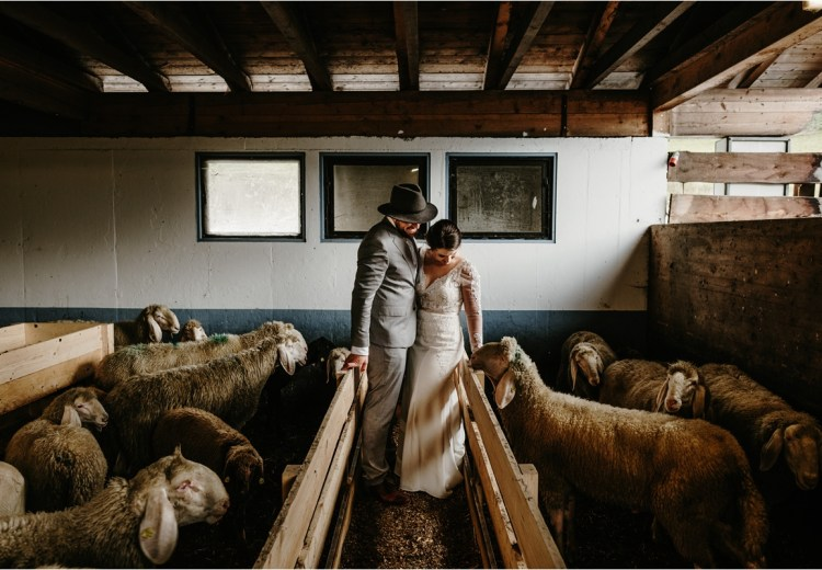 Innsbruck elopement with sheep by Wild Connections photography