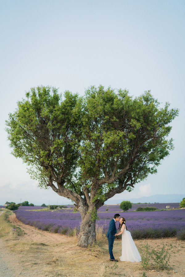 commitmentceremony in the lavender fields