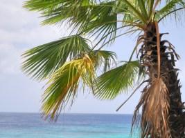 Beachlife dushi curacao
