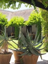 Bushmans kloof tuin
