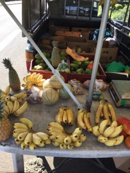 Creools eten guadeloupe fruit