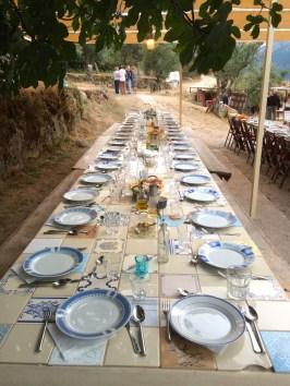 Festival Portugal lunch estival da estrela