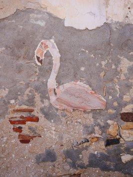 Flamingo sicilie brucoli