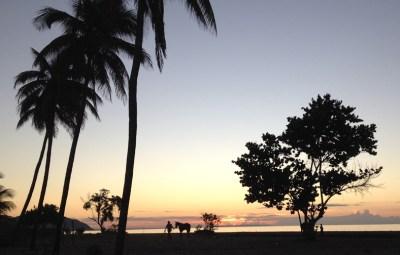 Gut river zonsopkomst Jamaica